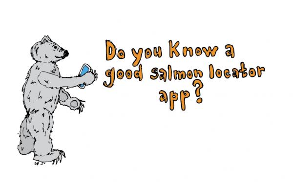 polarbear-salmon-app