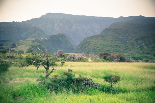 Some scenics along the way.  Looking towards Haleakala.