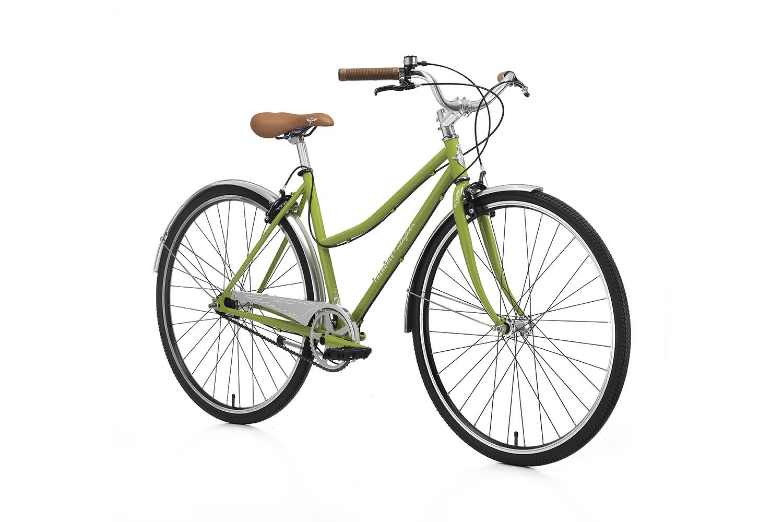 fairdale-bikes-2016-daybird-mgreen-2