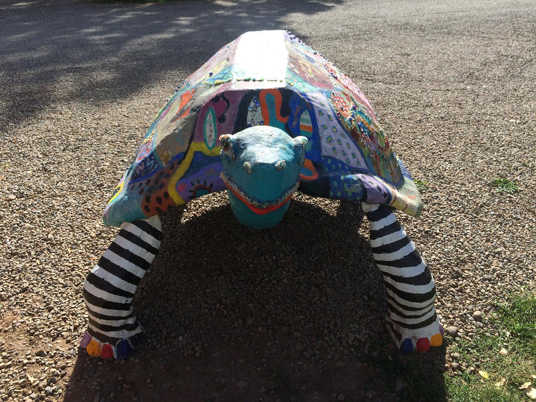 turtle_wsocks